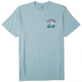 Tee Shirt Billabong Arch Ca